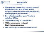 vancomycin1