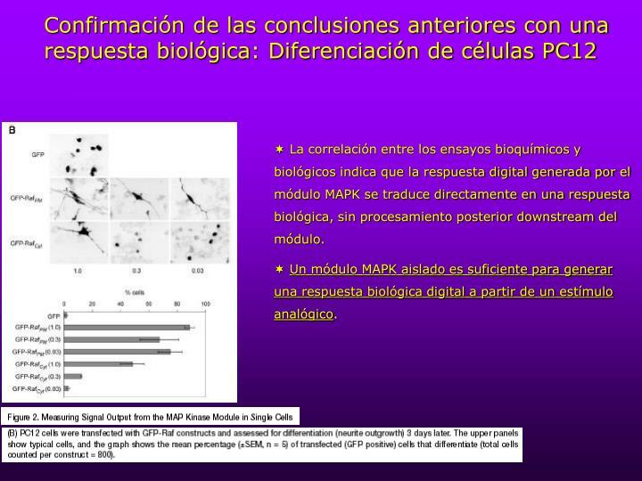Confirmación de las conclusiones anteriores con una respuesta biológica: Diferenciación de células PC12