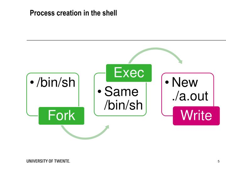 Process creation in the shell