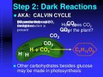 step 2 dark reactions