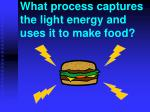 what process captures the light energy and uses it to make food