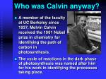 who was calvin anyway