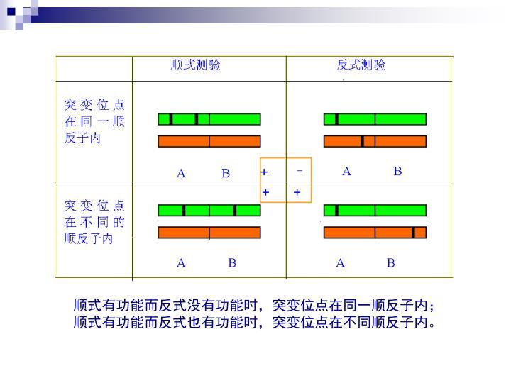 顺式有功能而反式没有功能时,突变位点在同一顺反子内;