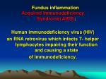 fundus inflammation11