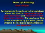 neuro ophthalmology24