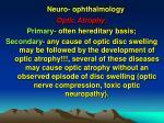 neuro ophthalmology25