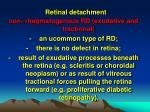 retinal detachment3