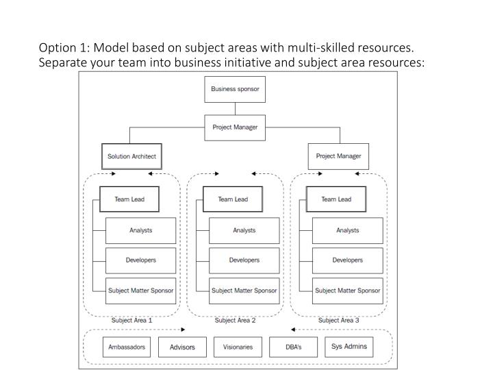 Option 1: Model based on subject areas with multi-skilled resources.