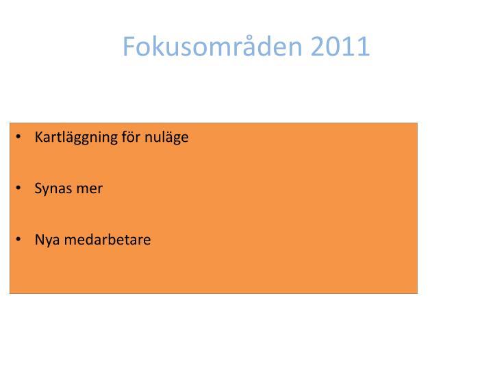 Fokusområden 2011