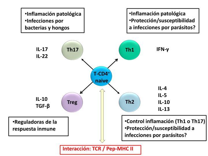 Inflamación patológica