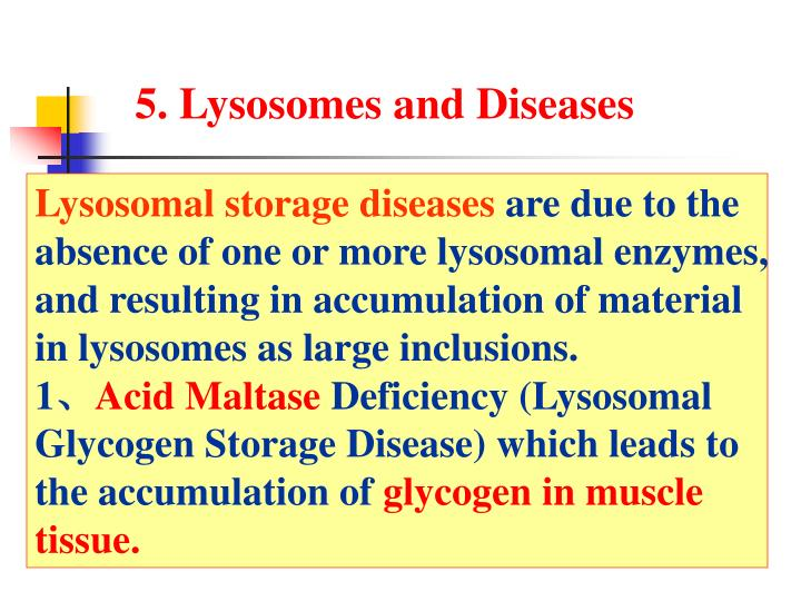 5. Lysosomes and Diseases