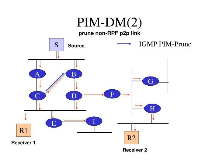 PIM-DM(2)
