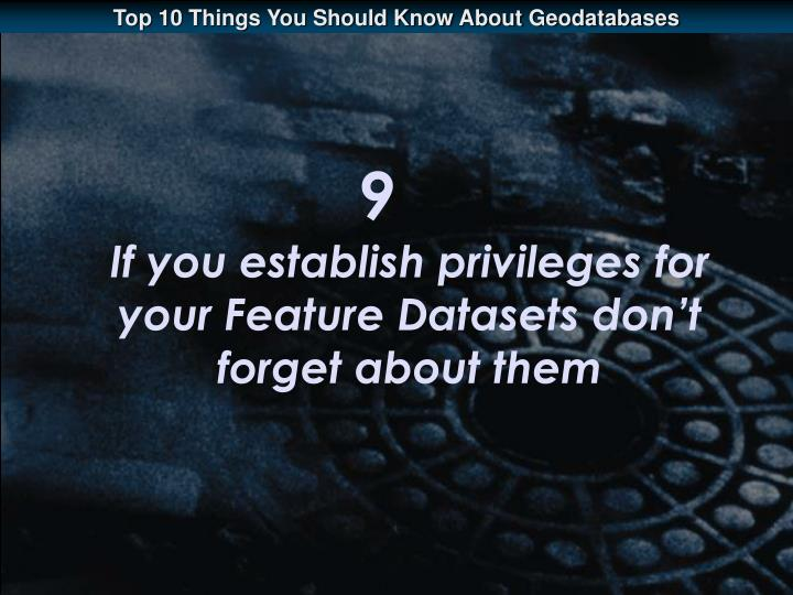 9 if you establish privileges for your feature datasets don t forget about them