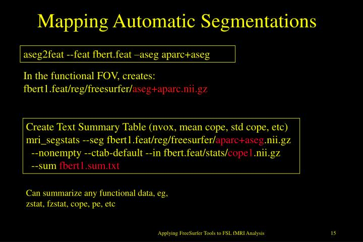 Mapping Automatic Segmentations
