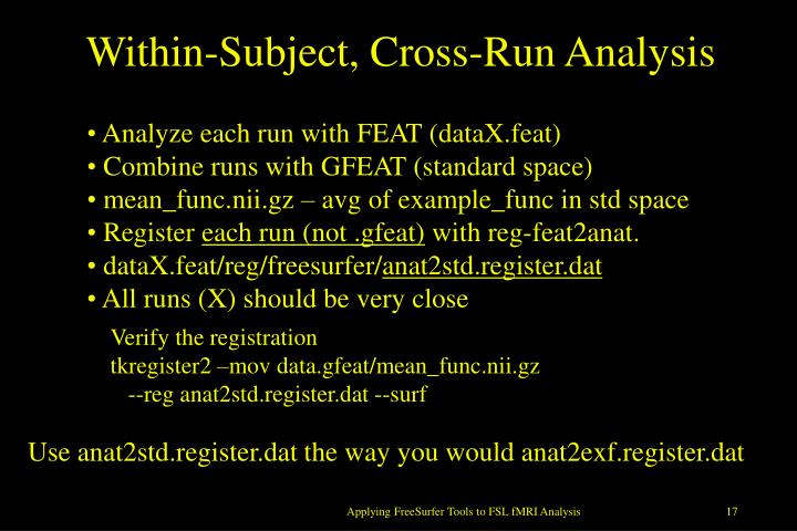 Within-Subject, Cross-Run Analysis