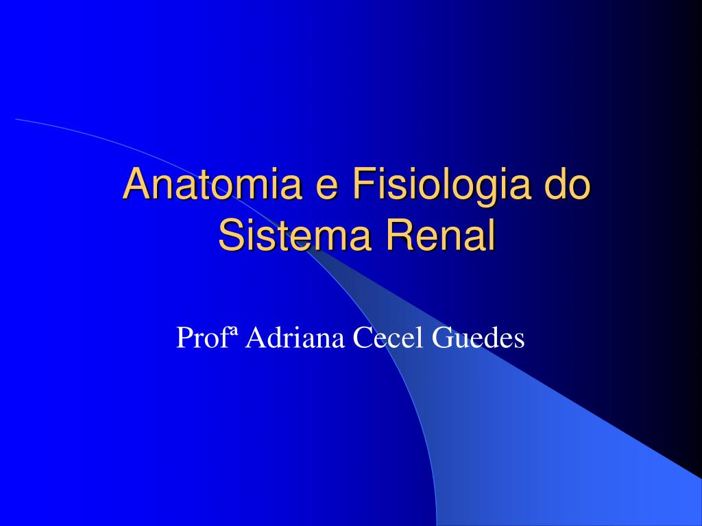 PPT - Anatomia e Fisiologia do Sistema Renal PowerPoint Presentation ...