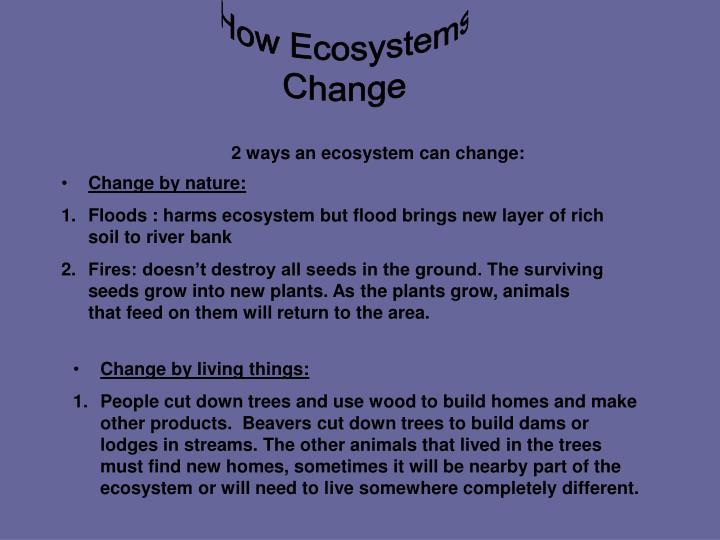 How Ecosystems