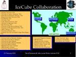 icecube collaboration