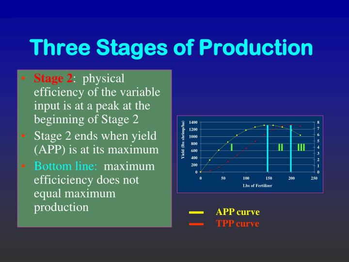 three stages of production