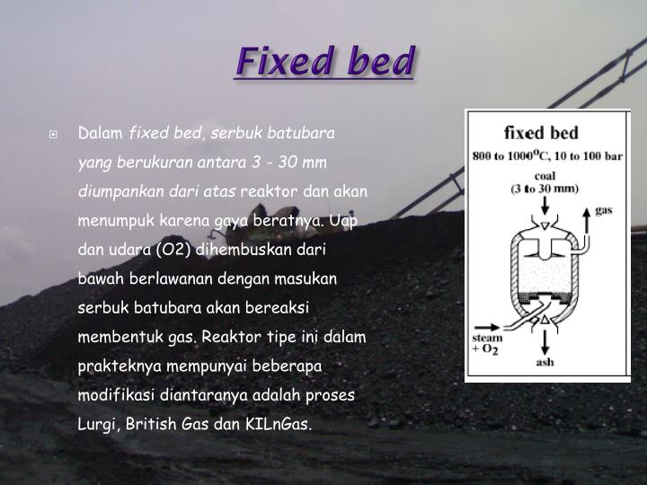 Fixed bed