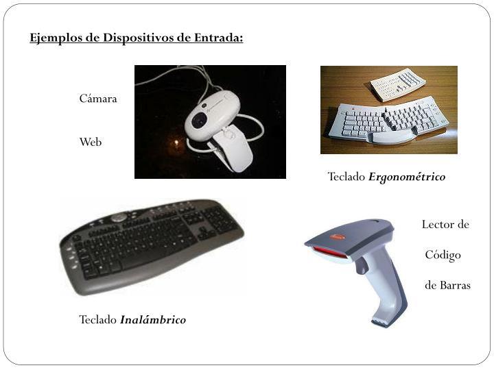 Ejemplos de Dispositivos de Entrada: