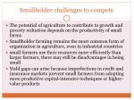 smallholder challenges to compete