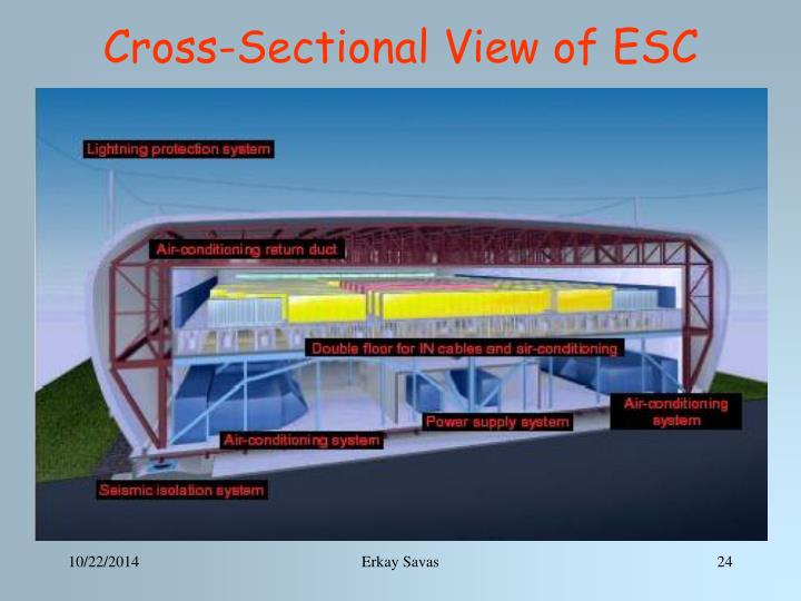Cross-Sectional View of ESC