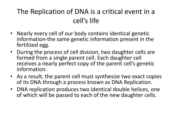 The Replication of DNA is a critical event in a cell's life