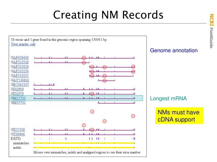Creating NM Records