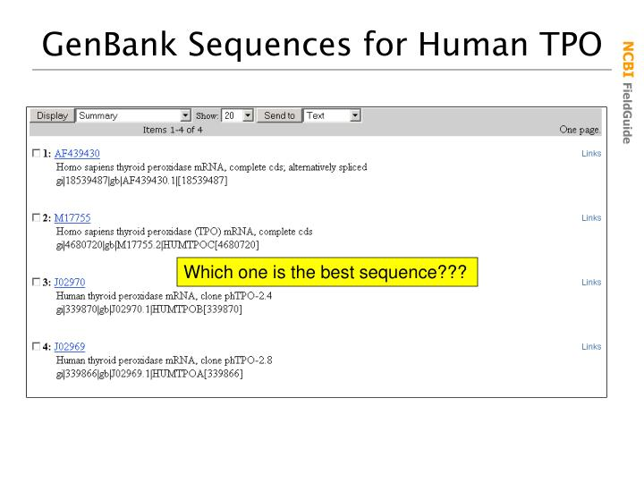 GenBank Sequences for Human TPO