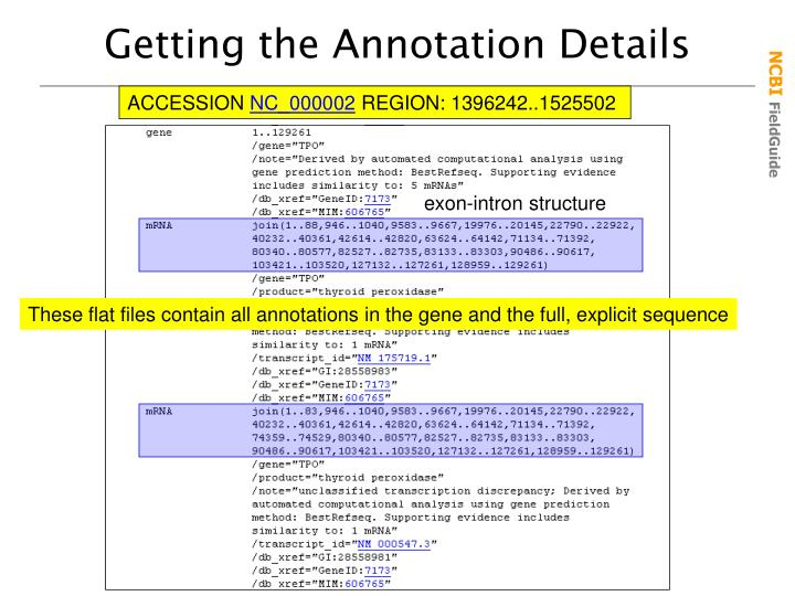 Getting the Annotation Details