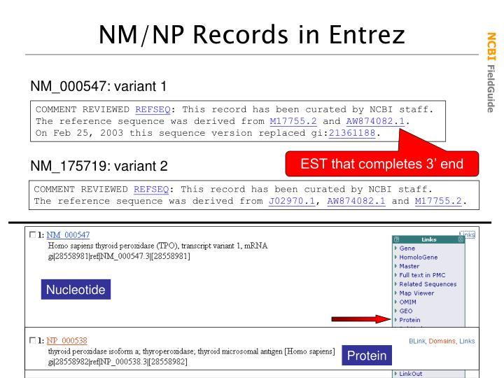 NM/NP Records in Entrez