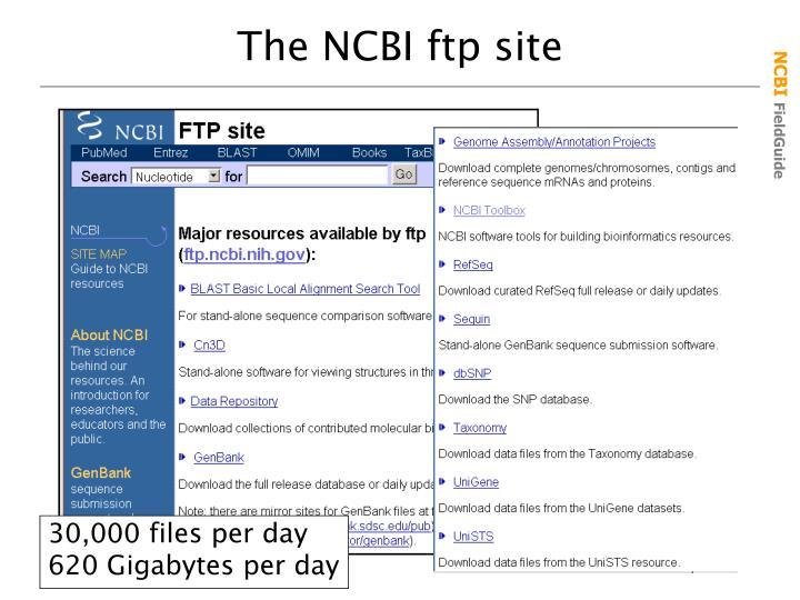 The NCBI ftp site