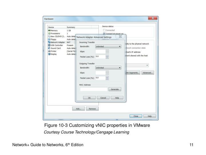Figure 10-3 Customizing vNIC properties in VMware