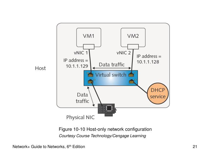 Figure 10-10 Host-only network configuration