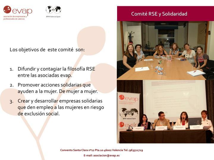 Comité RSE y Solidaridad