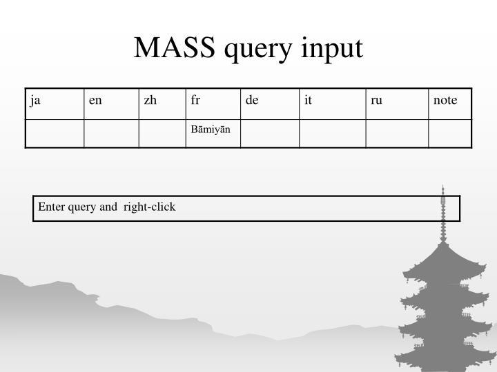 MASS query input