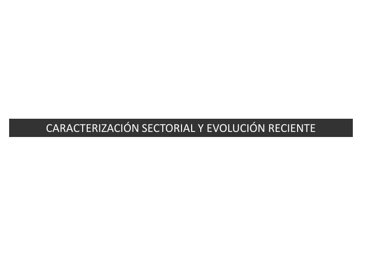 CARACTERIZACIÓN SECTORIAL Y EVOLUCIÓN RECIENTE