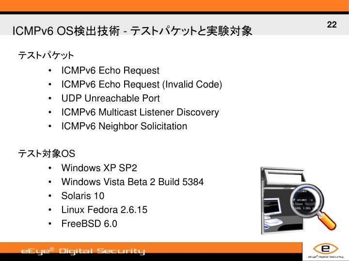 ICMPv6 Echo Request