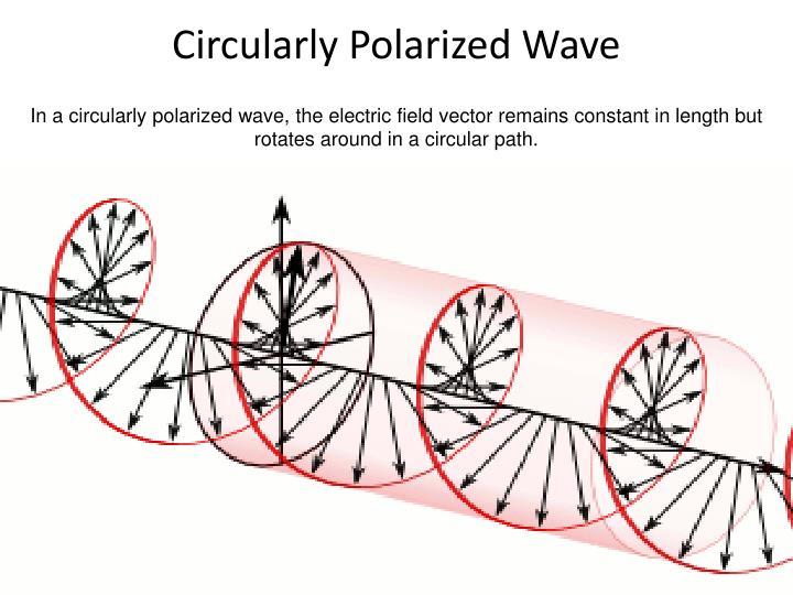 Circularly Polarized Wave