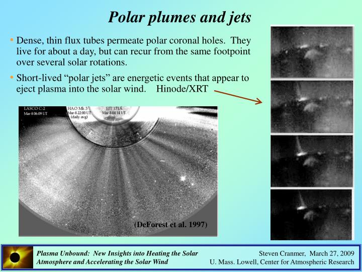 Polar plumes and jets