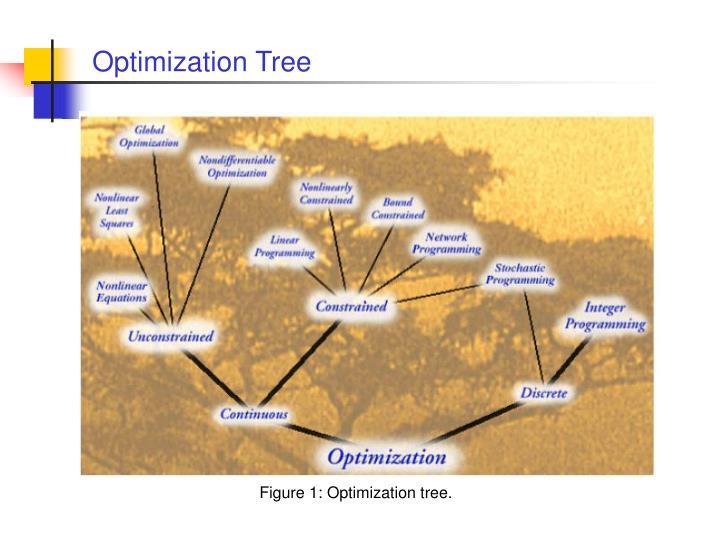 Optimization Tree