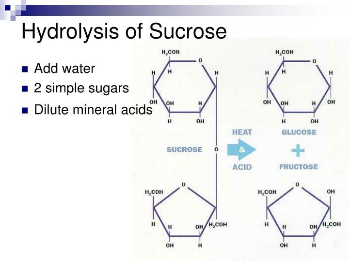 Hydrolysis of Sucrose