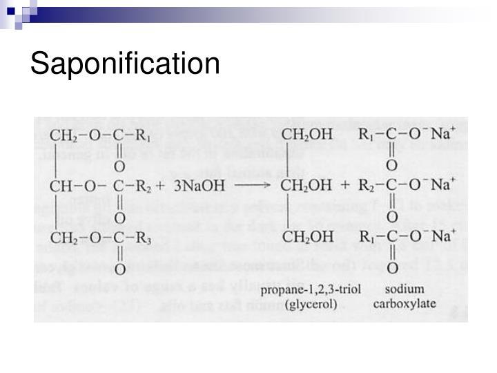 Saponification