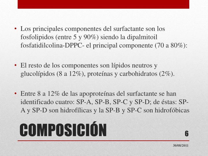 Los principales componentes del surfactante son los