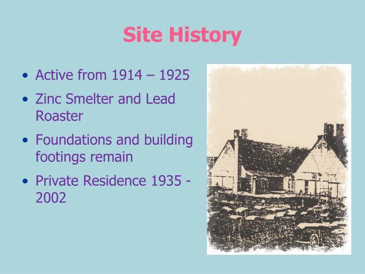 Site history