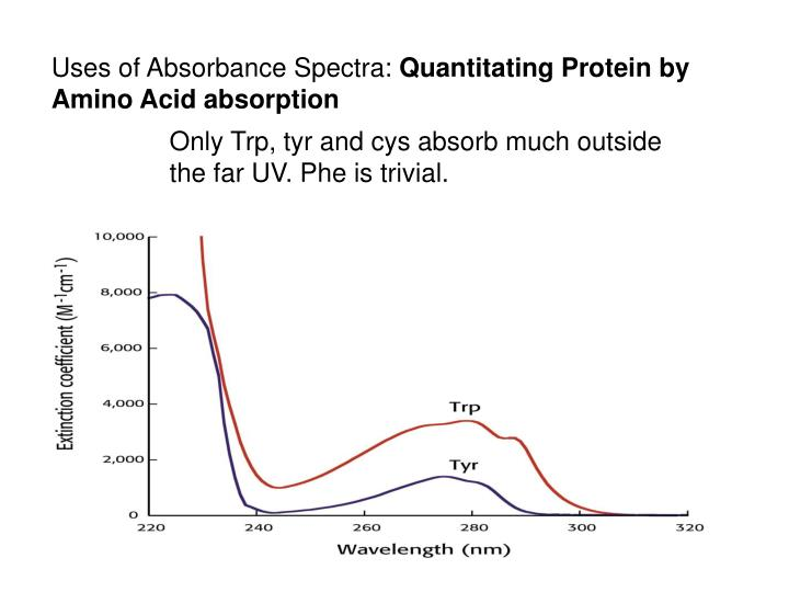 Uses of Absorbance Spectra: