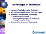 advantages of incubation