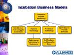 incubation business models