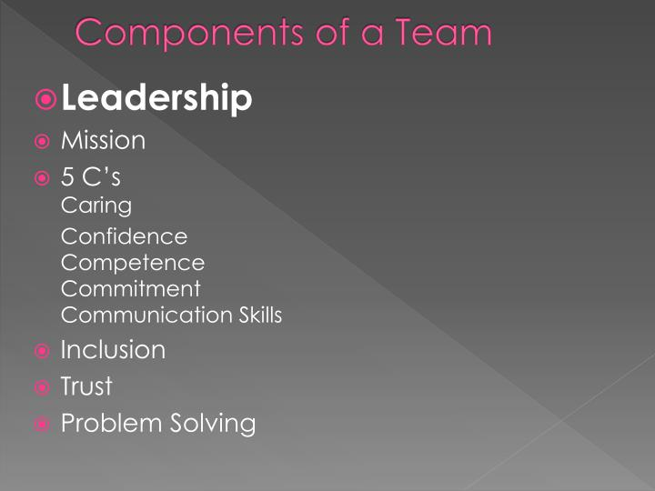 Components of a Team
